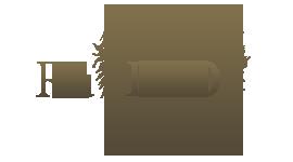1419263467_logo-wiki